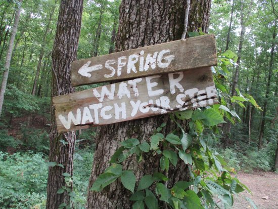 Tuscumbia, AL: We didn't go down to see the springs ~  I am getting over poison oak!