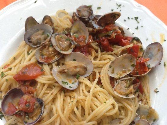 Spaghetti alle vongole picture of salvadori castiglioncello