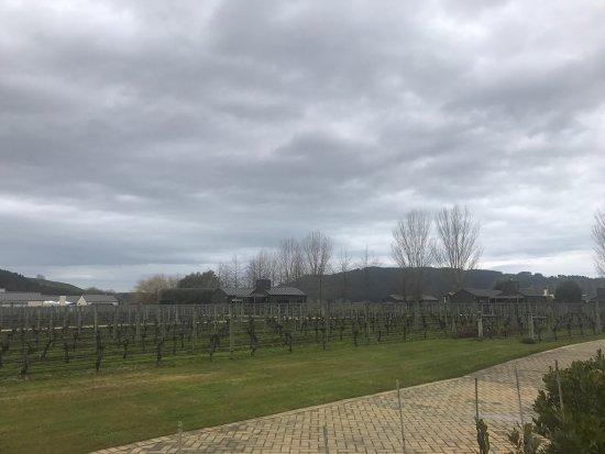 Havelock North, New Zealand: photo2.jpg