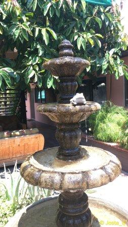 Hotel California: photo2.jpg
