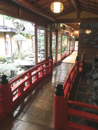 Kikokuso: photo3.jpg