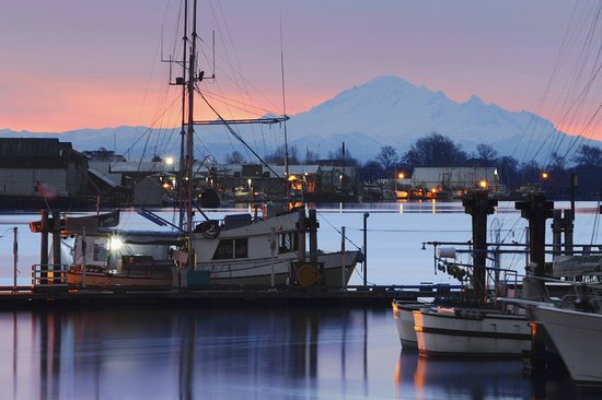 Westin Wall Centre Vancouver Airport: Dockside Morning Steveston Wharf