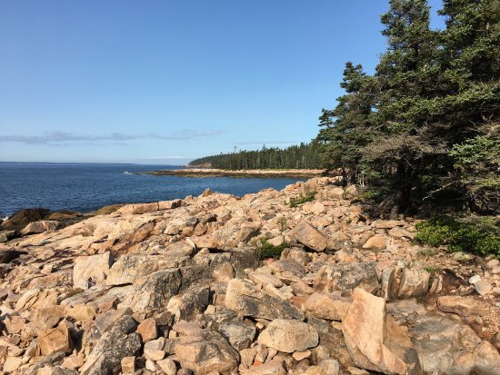 Bass Harbor, ME: photo5.jpg