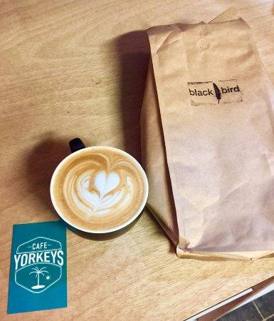 Yorkeys Knob, Australia: Blackbird Coffee @ Cafe Yorkeys