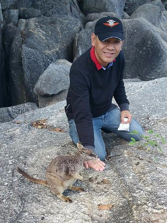 Granite Gorge Nature Park: Me feeding a wallaby