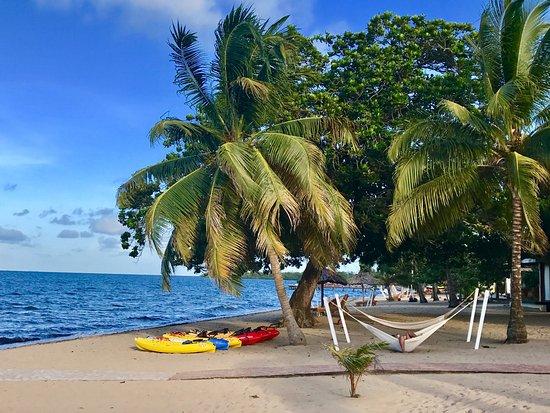 kayak area and hammocks picture of jaguar reef lodge. Black Bedroom Furniture Sets. Home Design Ideas