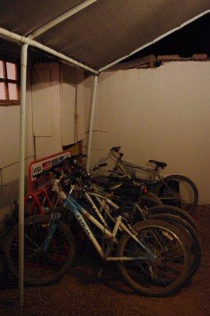 Rey Lagarto Hostel: Bicicletas a disposición de nuestros huéspedes