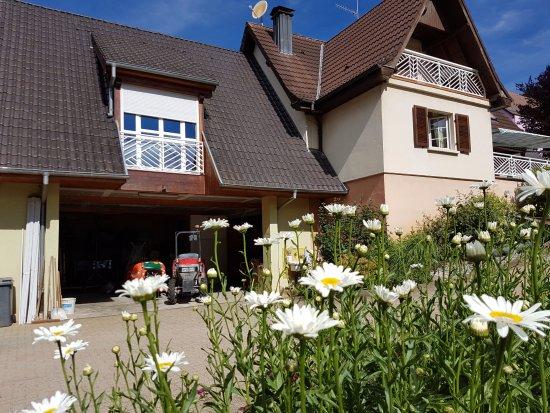 Mittelwihr, Francia: Le gîte Les Merles est situé au dessus du garage de l'exploitation