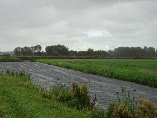 Egmond-Binnen, Niederlande: landschap rond klooster benedictushof-Egmond Binnen