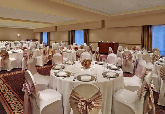 Elk Grove Village, IL: Elk Grove Ballroom Wedding
