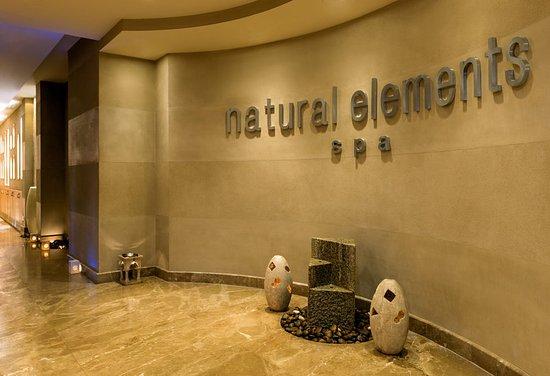 Le Meridien Dubai Hotel & Conference Centre: Natural Elements Spa