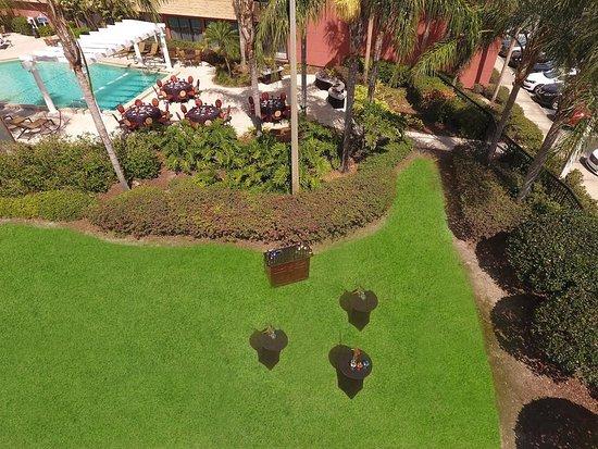 Maitland, FL: Green Lawn