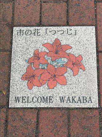 Tsurugashima, Japan: photo7.jpg