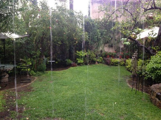 Villa Ganz: The garden was a great place to spend a rainy day reading under the cabana.
