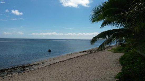 Tongatapu Island, Tonga: View up the beech...