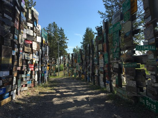 Sign Post Forest: photo1.jpg