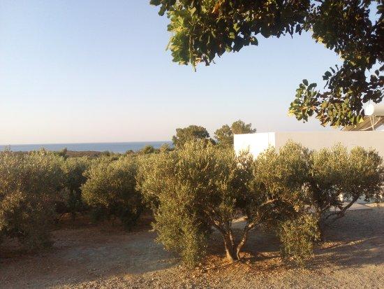 Elafonisi Resort by Kalomirakis Family: IMG_20170810_074857_large.jpg