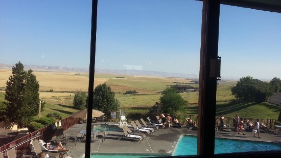 Pendleton, Oregón: The view of the pool and fields beyond from our table