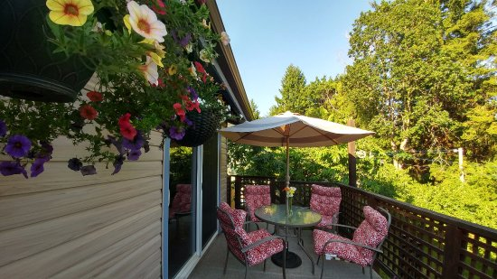 Arbour Cottage B & B: Deck
