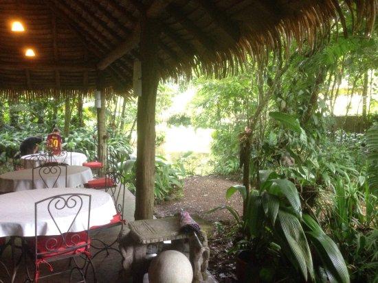 Horquetas, Costa Rica: photo2.jpg