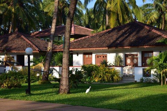 dona sylvia beach resort Индия Гоа южный