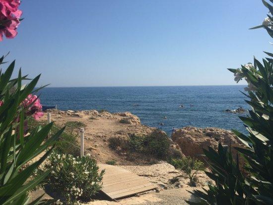 Rododafni Beach Holiday Apartments & Villas: photo9.jpg