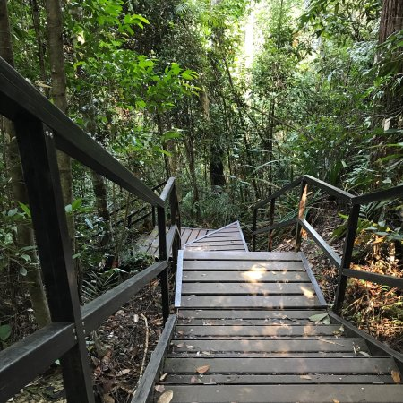 Taman Negara National Park, Malaysia: photo1.jpg