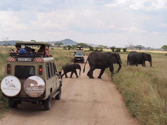 Landside Adventure & Safaris Ltd