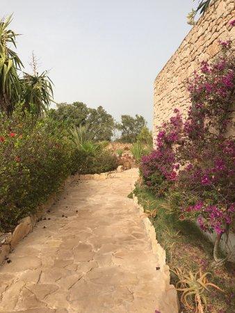Billede af les jardins de villa maroc for Les jardins de villa maroc essaouira