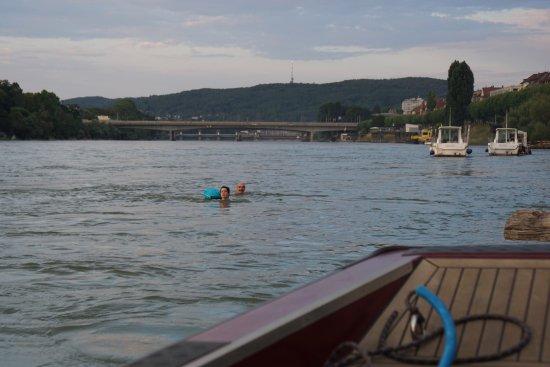 Rheinfähre: Basel Rheinschwimmer