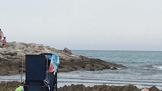 Camping Ca' Savio: photo9.jpg