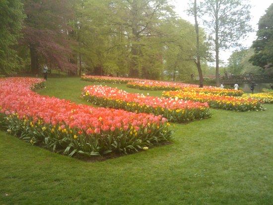 Groot-Bijgaarden, Bélgica: Floralie 3