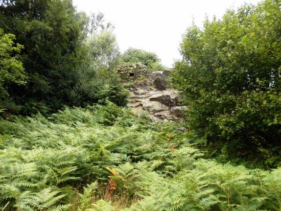 Leicestershire, UK: Stoneywell - Fort