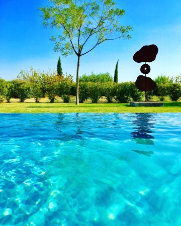 Cucuron, France: In the infinity swimming pool