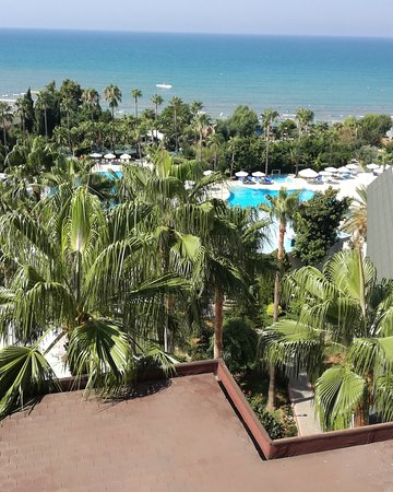 Hotel Iz Flower Side Beach: IMG_20170802_122157_704_large.jpg