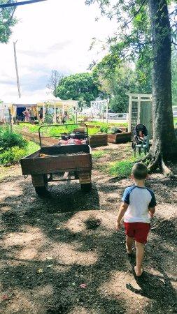 Currumbin, Australia: Adventure calls on Fridays at Freeman's Organic Farm.
