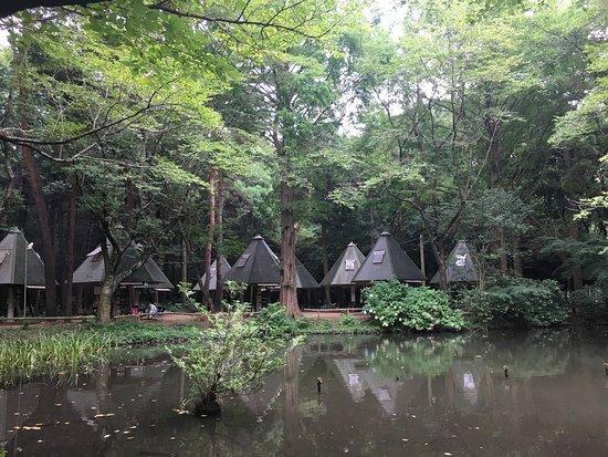 Цукуба, Япония: ゆかりの森
