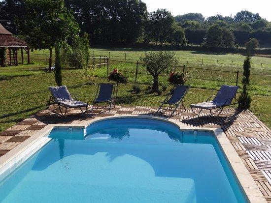 La Rolandie haute : Le jardin, la piscine