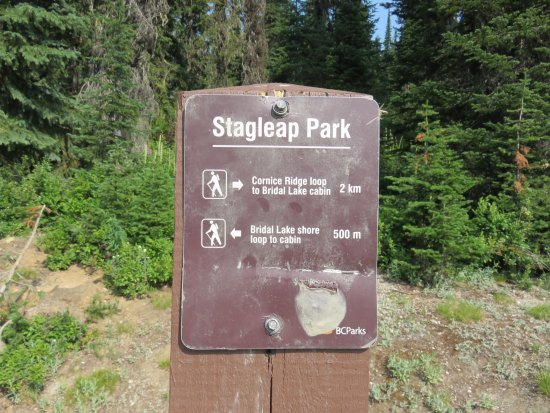 Salmo, Canada: Hikes