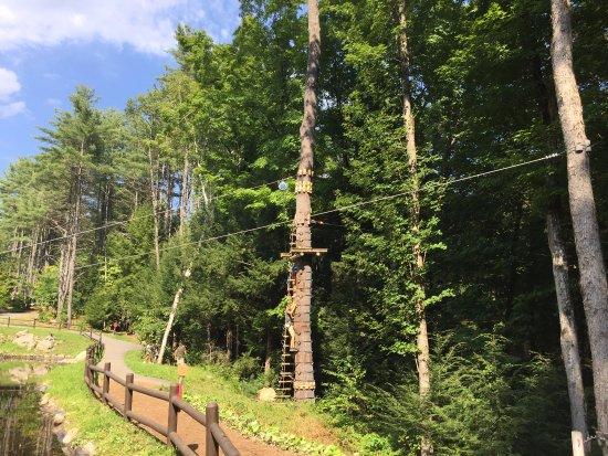 Adirondack Extreme Adventure Course: long zipline, ladder to black course