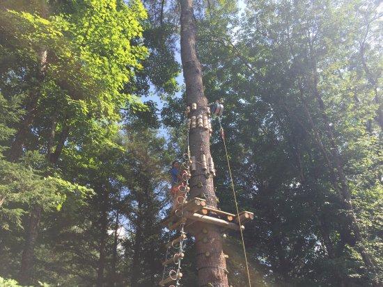 Adirondack Extreme Adventure Course: ladder to black course
