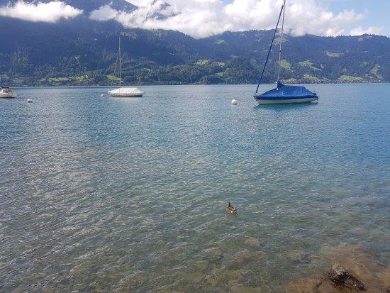 Thun, Suíça: 20170809_110742_large.jpg