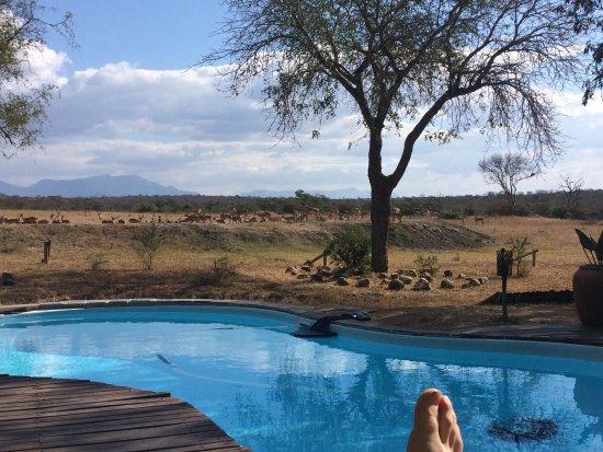 Tangala Safari Camp: photo0.jpg