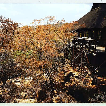 Welgevonden Game Reserve, Sudáfrica: photo2.jpg
