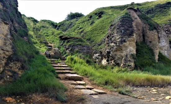 East Durham Coast : Up the steps from the beach