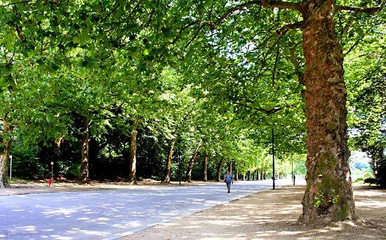 Promenade verte de Bruxelles
