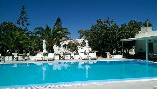 Pelagos Hotel-Oia: IMAG1213_large.jpg
