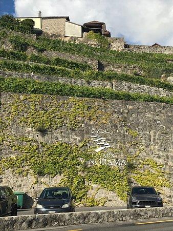 St-Saphorin-Lavaux