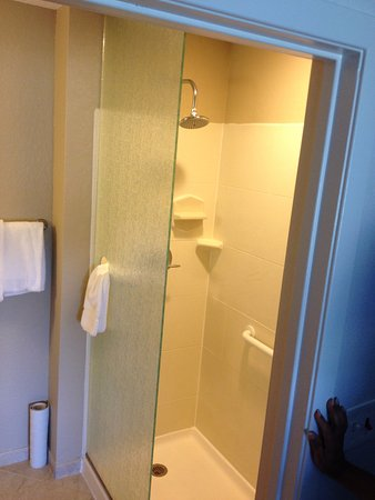 Sterling, VA: Notice that the shower doesn't have a door. NOT good!!!!!