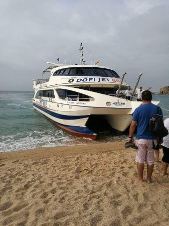 Costa d'en Blanes, สเปน: received_1502161356493654_large.jpg